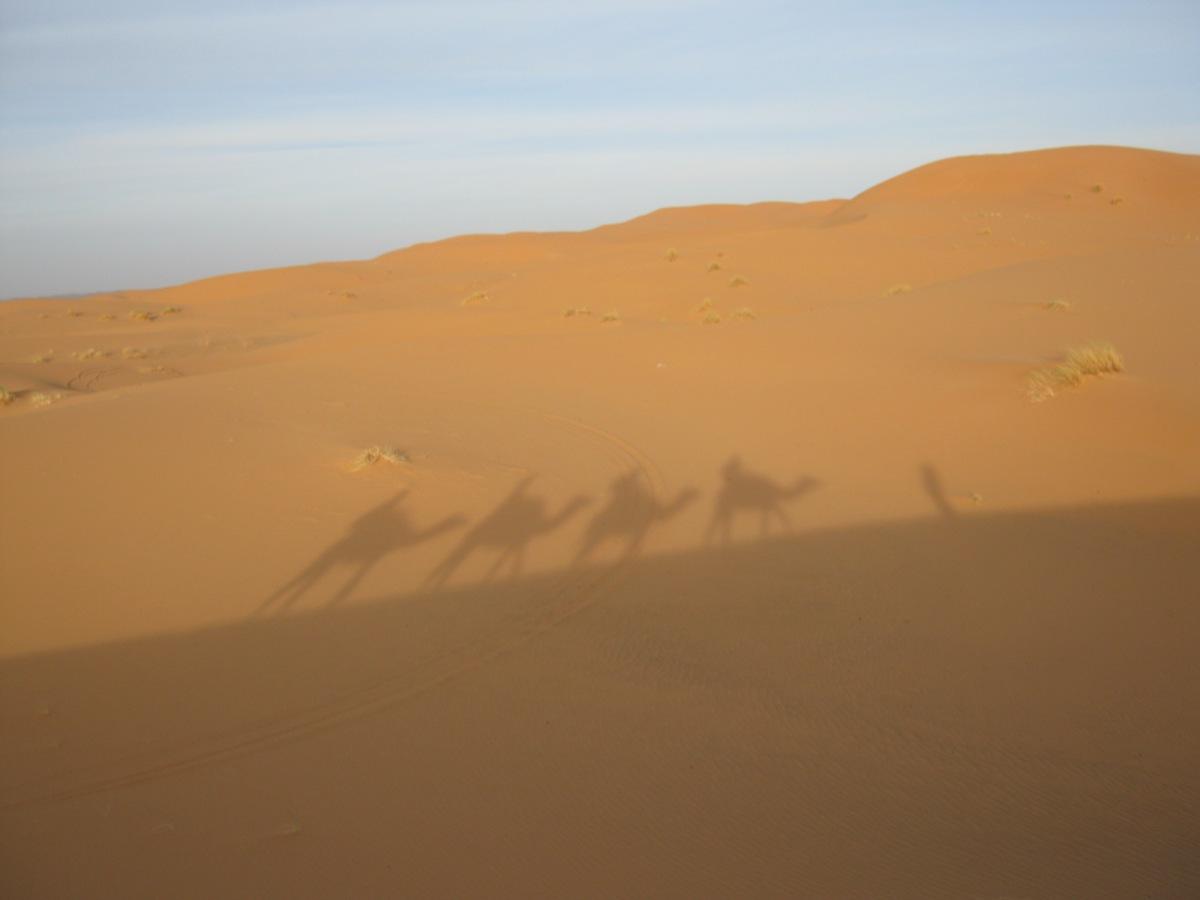 Fes y Merzouga,Marruecos