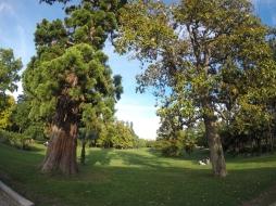 Francia-Burdeos-Jardin-Public